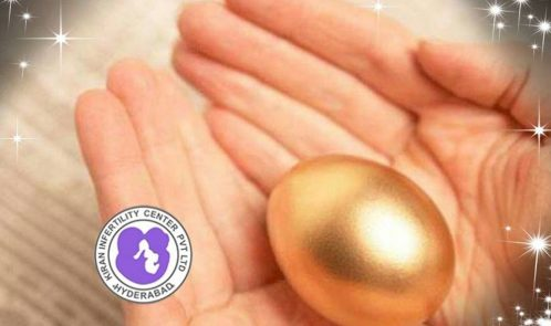 Egg donor ivf in hyderabad