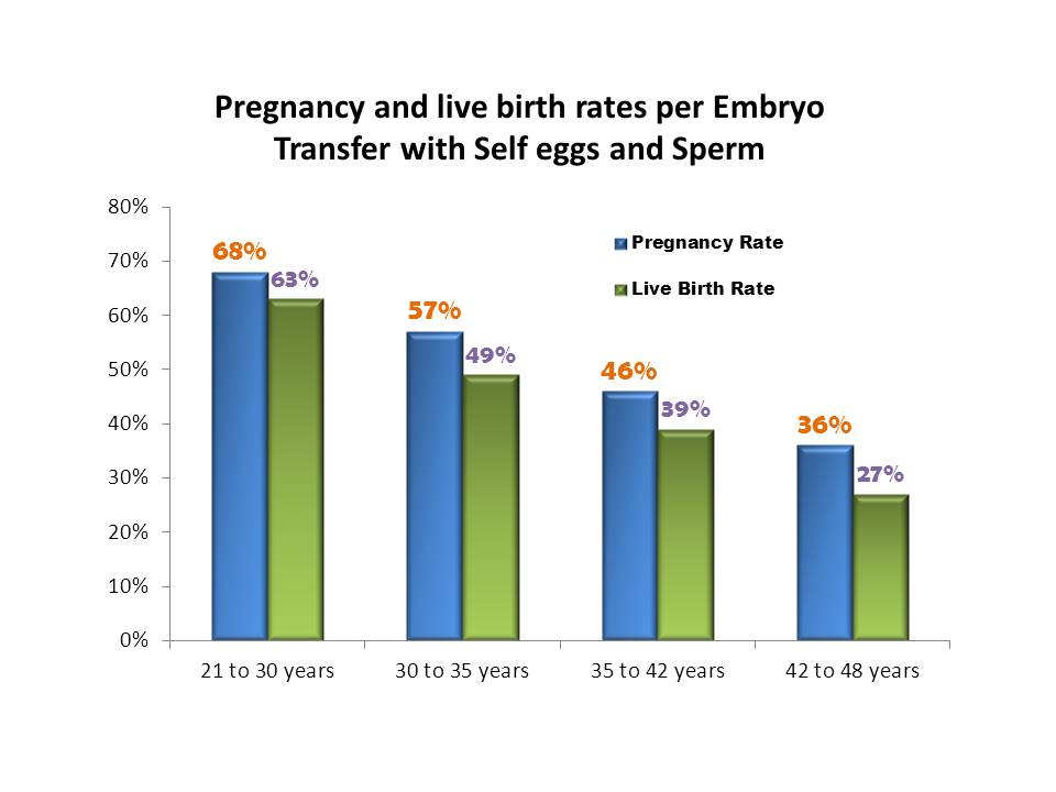 surrogacy success rates