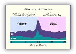 pituitary hormones in hyderabad